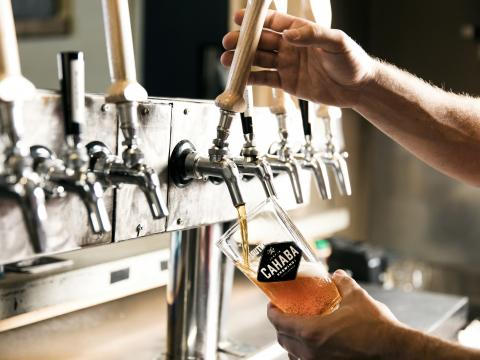 Pouring a draft beer at Cahaba Brewing company in Birmingham
